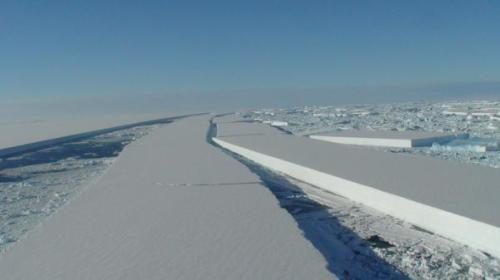 Fractures in Wilkins Ice Shelf; Source: British Antarctic Survey