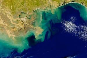 Oceanic Dead Zone